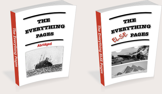The Everything Pages * The Everything ELSE Pages by David Allender